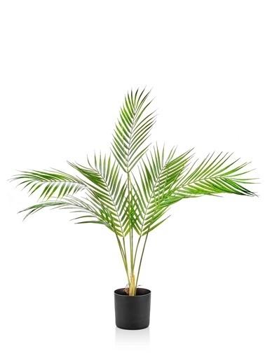 The Mia Yapay Kwai Ağacı 70 Cm Yeşil